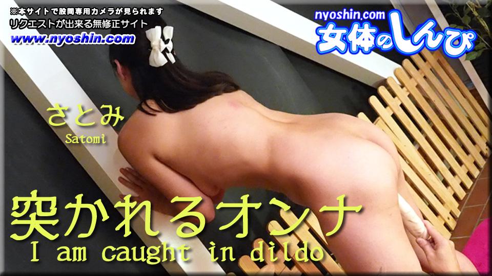 女体のしんぴ【ヘイ動画】突かれるオンナ:さとみ