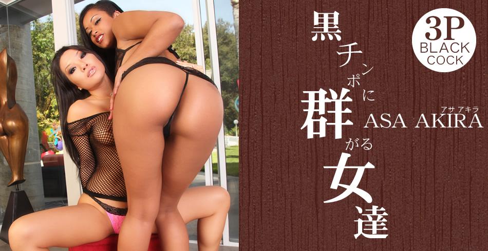 アサ アキラ:黒チンポに群がる女達 Asa Akira【ヘイ動画:アジア娘】