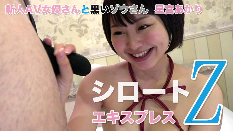 星宮あかり – 新人AV女優さんと黒いゾウさん